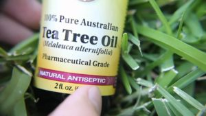 Tea Tree Oil For An Undesirable Nail