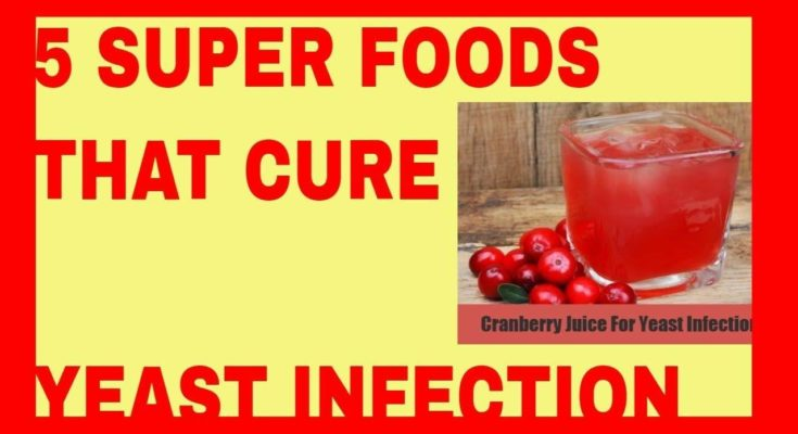 5 Super Foods That Cure Yeast Infection